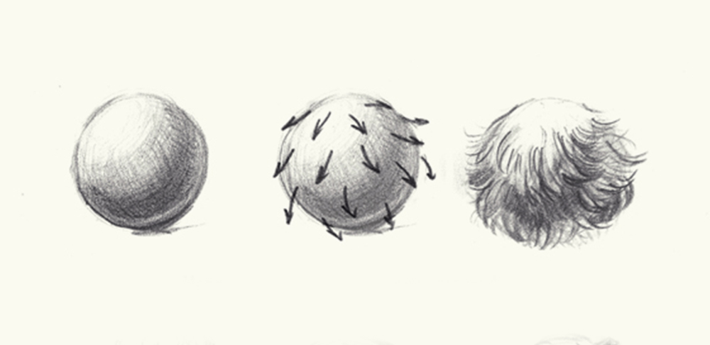 Шерсть животных: как нарисовать убедительно